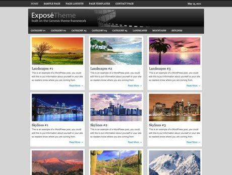 Expose ~ Genesis WordPress sablon